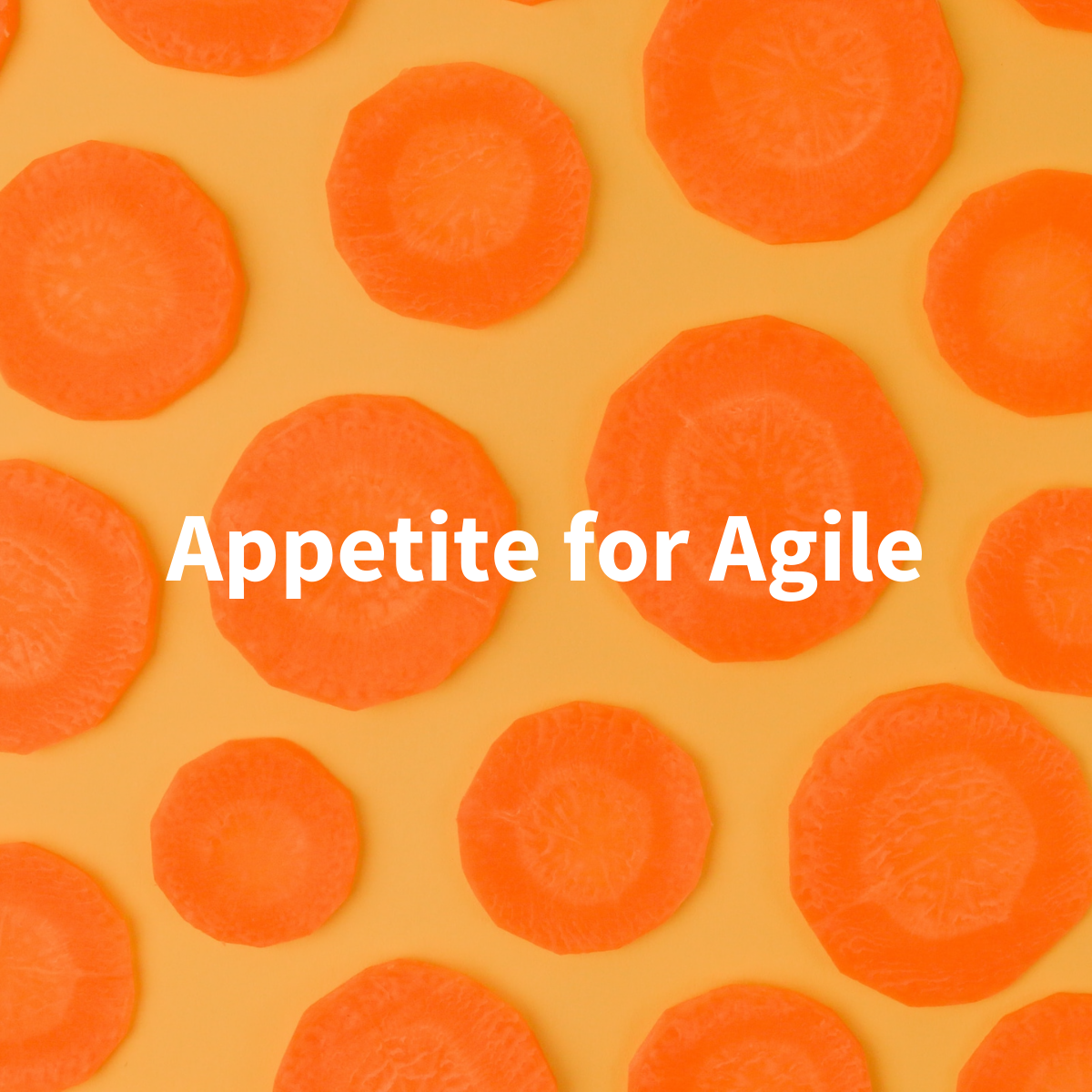 Can Everyone Utilize Agile? Absolutely.
